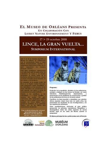 download pdf in spanish version