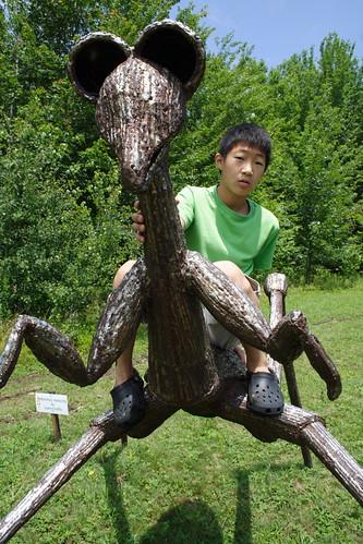 Jeff Tames the Wild Preying Mantis