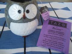 Tazo Passion 2