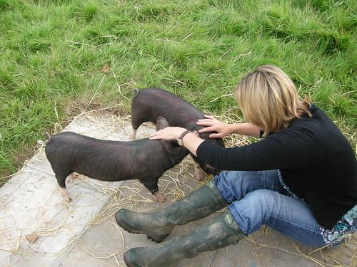 The Hog Blog - August 2007, part 2