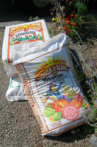 Compost for the fall garden
