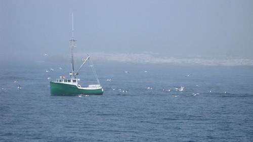 Boat going fishing