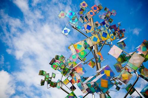 Professional Photo of Spectrum Tree-Unique