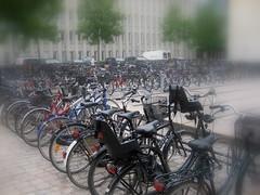 Cyclists Dream