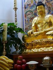 Buddha's birthday, 2007