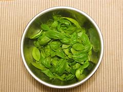 Basilico leafs
