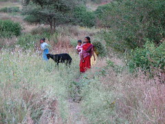 Indian family with goat in field, India