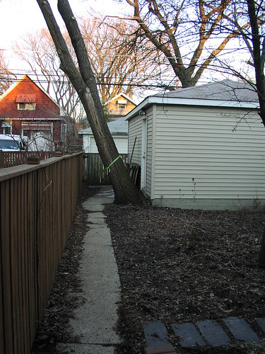 north side of backyard - March 2005