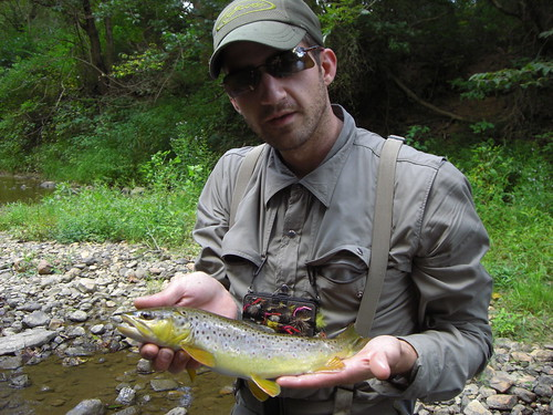 Good Brown Trout