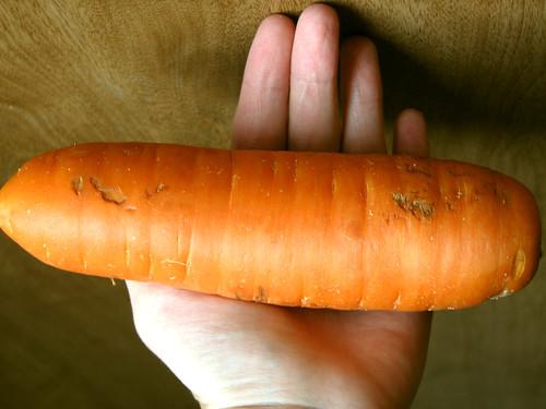 Very Fat Carrot