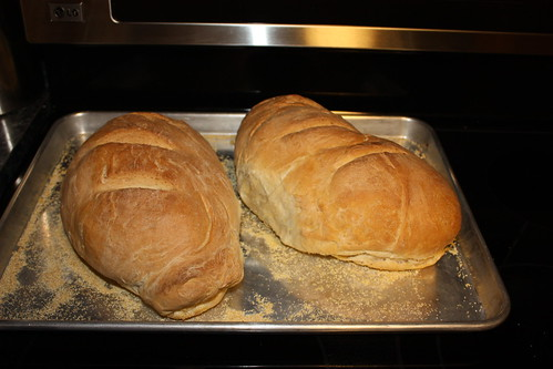 lovely, crusty French bread for supper