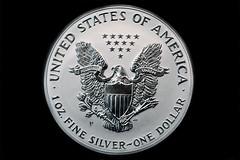 2006 Silver Eagle 20th Anniversary Reverse Pro...