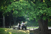 Photo:Under the Tree By