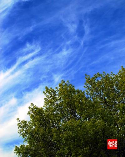 D80-CHI_SpringtimeSky01_2010-04_28A