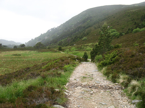 Ryvoan Pass