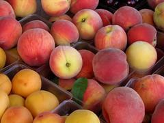 Peaches by Pentax K1000 Gal