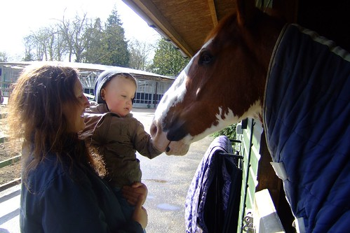 Alex and Ponies (27)