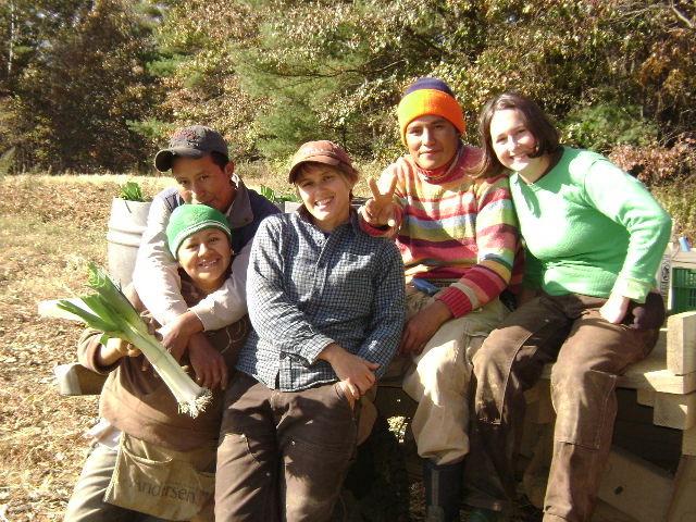 Picadilly Farm Crew