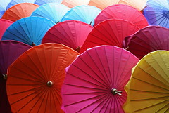 Umbrellas 05