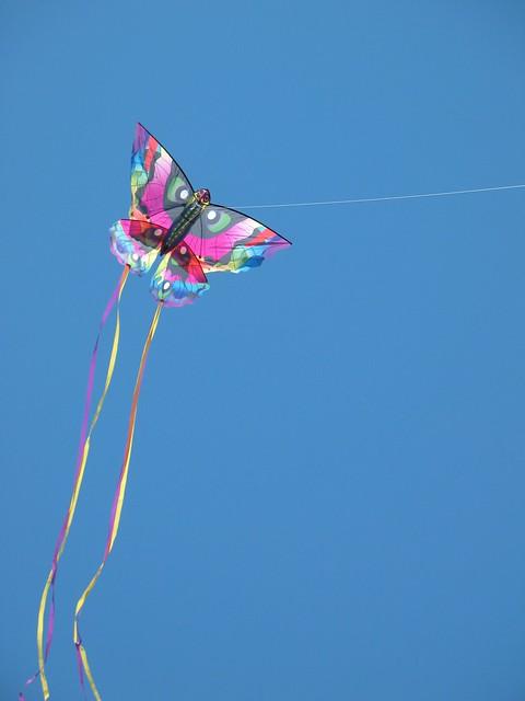 Kites at Kite Flying Festival