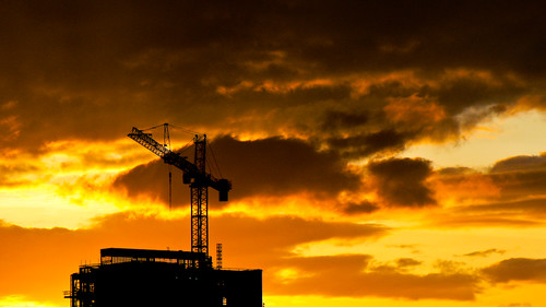 Golden Crane - Redux