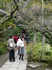Visitors at Engaku-ji, Kamakura