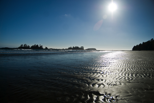 Tofino-Chesterman's