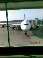 A340-300 Lufthansa - frontal
