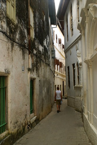 Stone Town Wanderer