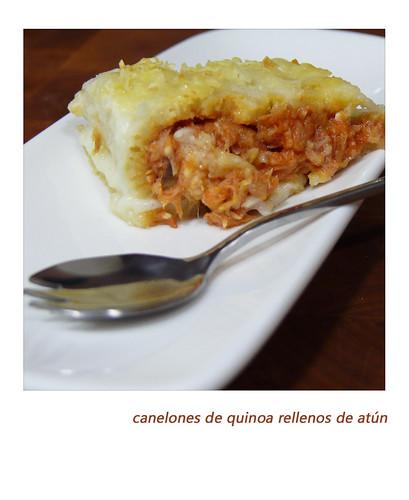 quinoa_atun_1 por somaral3.