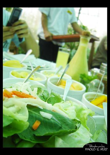 Sonya's Garden, Green Salad