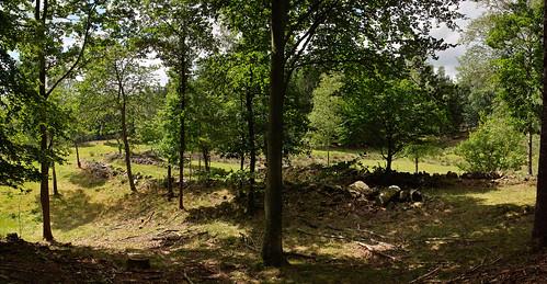 Fägatan från bokskogen
