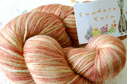 Sundara fingering Silky merino in CARMEL APPLE
