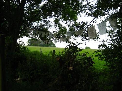 garden prayer flags