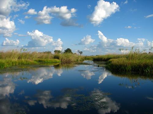 Caño en el Delta del Okavango - Botswana 2008