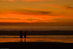 couple-hold-hands-in-silhouette-at-sunset-16no...