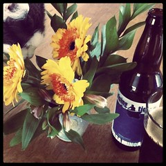 Fur and Flowers and Hops - Instagram