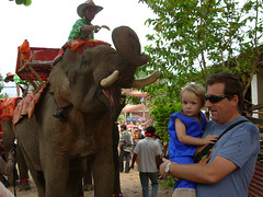 VV parade 25 Tash Roo & elephant