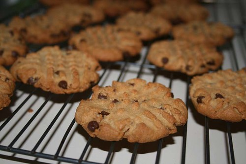 peanut butter chocolate chip cookies, cooling