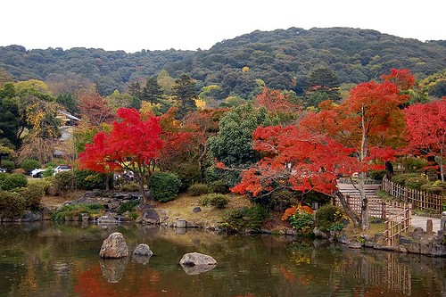 maruyama view
