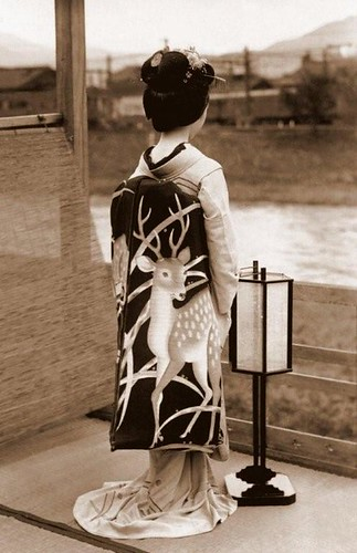 SHOW ME THE OBI !  A Maiko's Spectacular Fashion Statement in Old Kyoto, Japan (by Okinawa Soba)