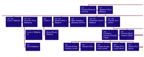 Demma Family Tree02