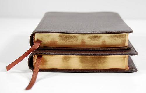 More Brown Goatskin Snapshots Bible Design Blog