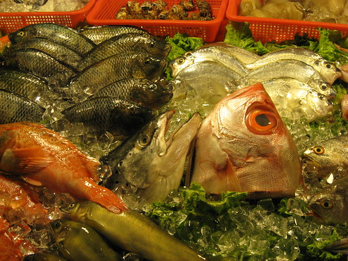 Fishhead in Hauxi Night Market