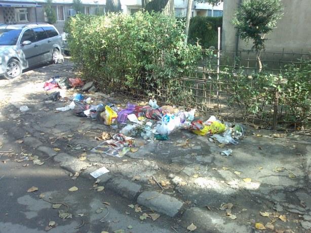Ce ramane in urma ridicarii gunoiului