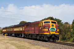 4473 into Moss Vale with The Cockatoo Run