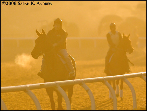 Sunrise at Santa Anita