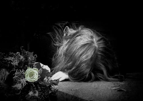 Broken Flowers por h.koppdelaney