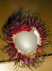 Rambutan/jrozwado's photo@www.flickr.com