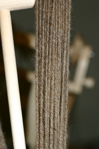 Coopworth Navajo ply on the niddy